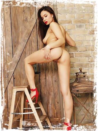 Erotic Images Met Art X